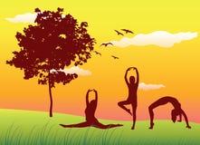 ćwiczy gimnastyk gazon robi lato kobiety royalty ilustracja