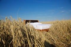 Łóżko w zbożowym pola pojęciu dobry sen Zdjęcia Stock