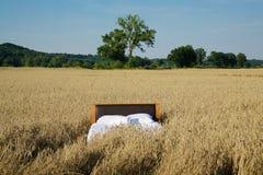 Łóżko w zbożowym pola pojęciu dobry sen Obrazy Stock