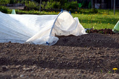 łóżko zakrywający ogród Obrazy Royalty Free
