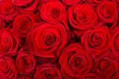 łóżkowe czerwone róże Obrazy Royalty Free