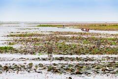 Łódź na Szerokim jeziorze w Tajlandia Fotografia Stock