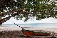 Łódź, plaża i drzewo, Zdjęcie Stock