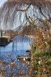 Łódź pod drzewem w zimie obraz stock
