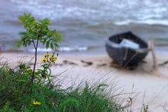 Łódź rybacka na plaży obrazy stock