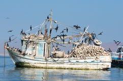 Łódź rybacka w Paracas parku narodowym Peru Obraz Royalty Free