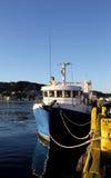 Łódź rybacka, Wellington schronienie Obraz Stock