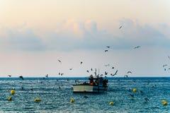 Łódź rybacka wokoło wychodzić morze przy świtem, seagulls i chmurami, obrazy royalty free