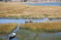 Łódź w płochach Titicaca jezioro, Copacabana, Boliwia Obrazy Royalty Free
