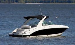 łódkowata prędkość Zdjęcia Royalty Free