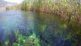 łódkowata wycieczka, płochy, dziwaczny podwodny azmak rzeka, indyk zdjęcie wideo