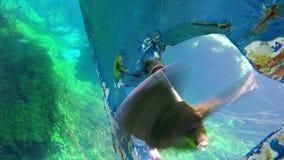 łódkowata wycieczka, płochy, dziwaczny podwodny azmak rzeka, indyk zbiory wideo
