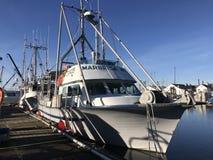 Łódkowatego łodzi dake Steve błękitny słońce obraz royalty free