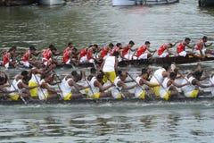 łódkowaty bieżny wąż Zdjęcia Stock