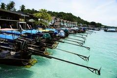 łódkowaty długi ogon zdjęcie royalty free