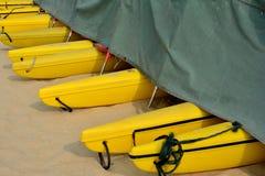 Łódkowaty floater Zdjęcie Royalty Free