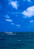łódkowaty Maldives oceanu żeglowanie tradycyjny zdjęcie royalty free