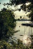 Łódkowaty natury Alster jezioro w Hamburskim Niemcy widoku przy pięknymi i sławnymi miasto parka ludźmi wiosłuje żeglowania niebo zdjęcia stock