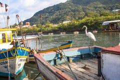 łódkowaty połowu dziewczyny portu obsiadanie zdjęcie royalty free