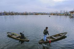 Łódkowaty wywoławczy ` Shikara ` używać lokalnymi ludźmi podróżować krzyż Dal jezioro Zdjęcie Stock