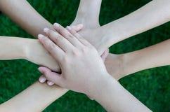 Łączy ich ręki na zielonej trawy tle fotografia stock