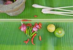 Łączy polewkę, ziołowy Tajlandzki jedzenie na bananowym liściu tom yum Zdjęcie Royalty Free