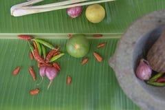 Łączy polewkę, ziołowy Tajlandzki jedzenie na bananowym liściu tom yum Obraz Stock