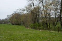 Łąka i fenceline w rockbridge natury prezerwie zdjęcie stock