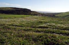 Łąka i wzgórza Fotografia Stock