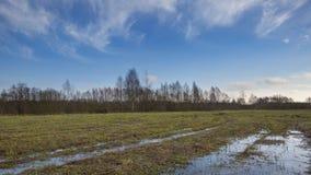 Łąka krajobraz z kałużą fotografia stock