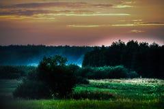 Łąka, Krajobrazowa fotografia, Ścienna sztuka, natura druk, Domowy wystrój, Pszeniczni pola, sztuki fotografia, druk, Ścienny obr Obrazy Royalty Free