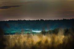 Łąka, Krajobrazowa fotografia, Ścienna sztuka, natura druk, Domowy wystrój, Pszeniczni pola, sztuki fotografia, druk, Ścienny obr Fotografia Royalty Free