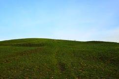Łąka na wzgórzu Obraz Stock