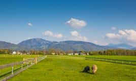 Łąka na zewnątrz Salzburg Zdjęcie Royalty Free