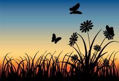Łąka przy wschodem słońca royalty ilustracja