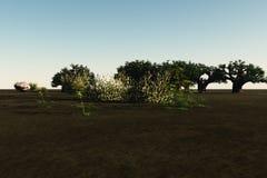 łąka spokojna Fotografia Stock