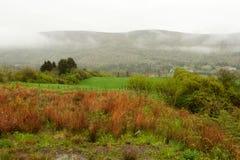 Łąka w górach Zdjęcie Royalty Free