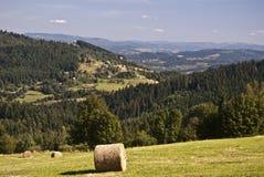 Łąka z hayrick i ładnym widokiem Zdjęcie Royalty Free