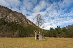 Łąka z stajnią i dużym drzewem Zdjęcia Stock