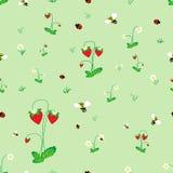 łąki bezszwowy deseniowy Fotografia Stock