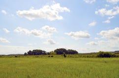 Łąki i drzewa na morze bałtyckie wyspie Usedom pod niebieskim niebem z biel chmurami i linia kolejowa bulwarze przy ho obraz stock