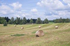 Łąki i siana rolki Niebieskie niebo i piękna natura zdjęcie stock