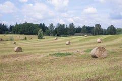 Łąki i siana rolki Niebieskie niebo i piękna natura obrazy stock