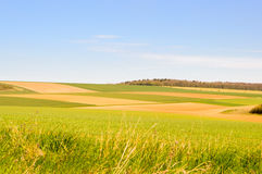 Łąki i uprawy Fotografia Stock