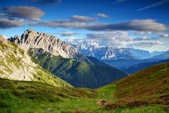 Łąki, kwiaty, szczerbili szczyty i mgławe doliny w Carnic Alps zdjęcia royalty free