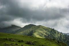 Łąki na wierzchołku góra zdjęcie stock