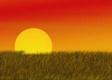 łąki nad wschód słońca ilustracji
