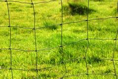 Łąki ogrodzenie Obraz Royalty Free
