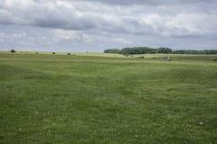 Łąki - Salisbury równina obraz stock