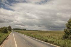 Łąki Salisbury równina droga -/ zdjęcia stock